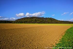 Terril des Pinchonvalles à Avion.Au sud de Lens et de Liévin, le paysage est dominé par l'activité agricole. Dans ce paysage de champs ouverts, les terrils émergent sans transition. © 2012, Hubert Bouvet, Région Nord-Pas de Calais