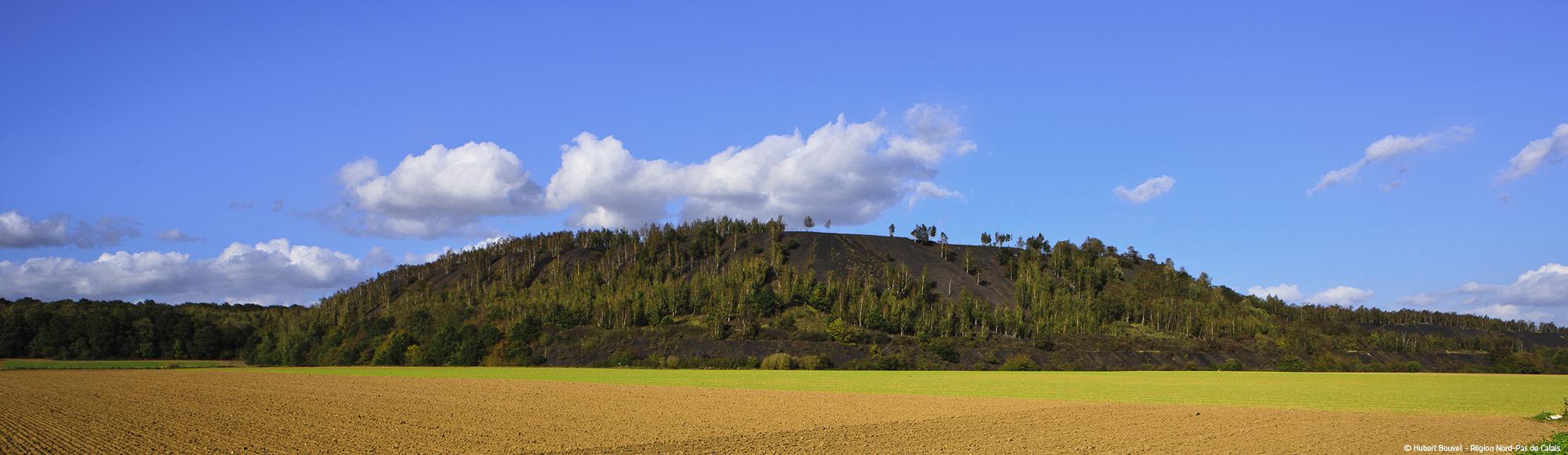 Terril de Pinchonvalle © 2012, Hubert Bouvet, Région Nord-Pas de Calais